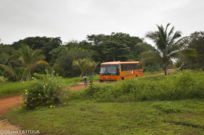 wordpress-com_guyana_bus-1