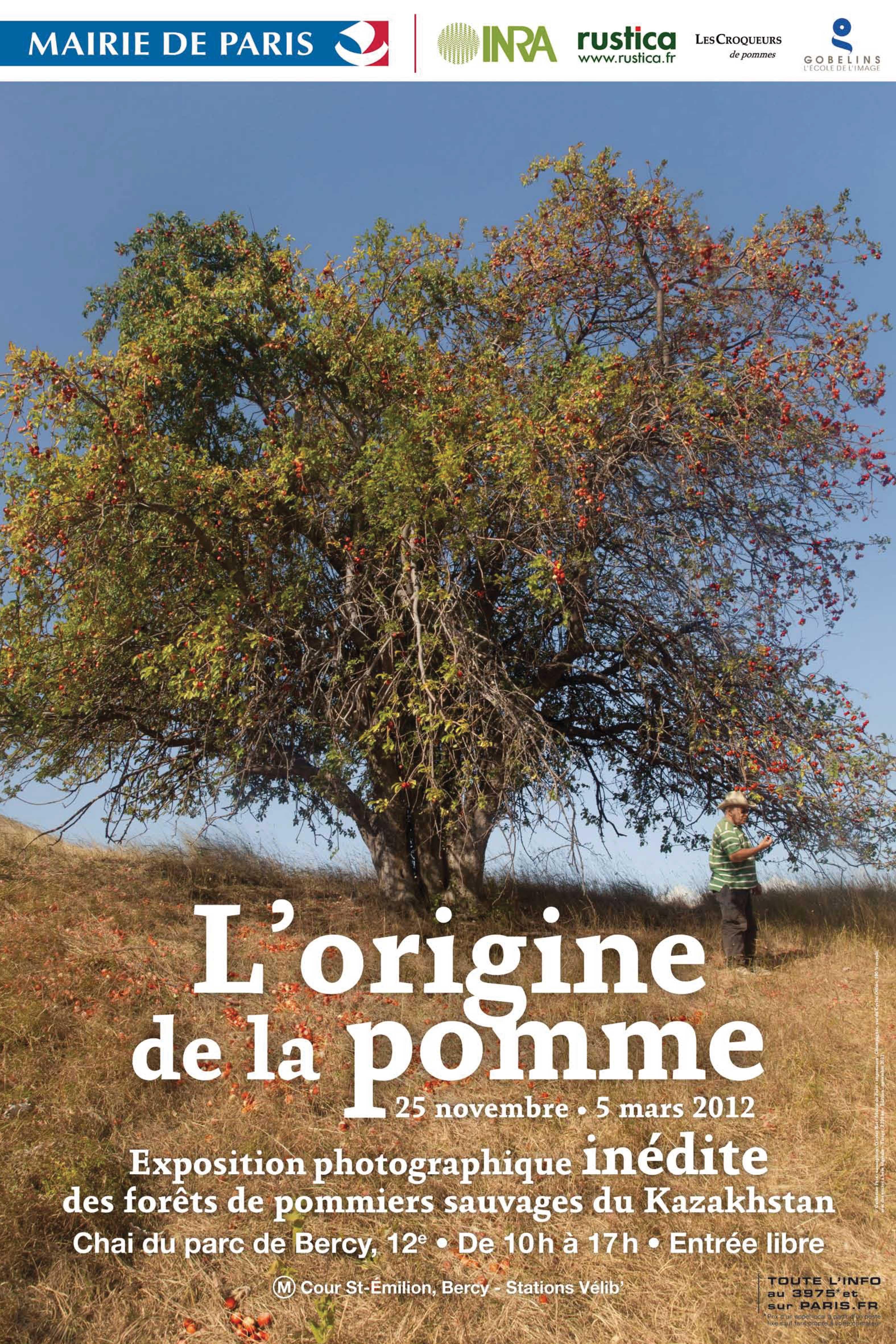 Idée sortie : l'origine de la pomme … en photo !