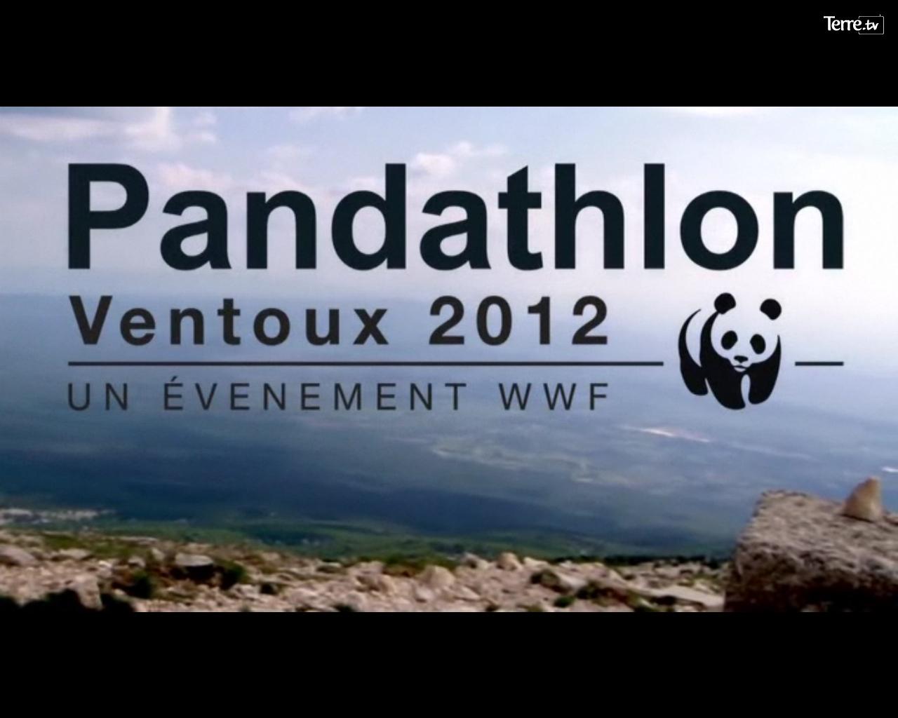 Le pandathlon du WWF