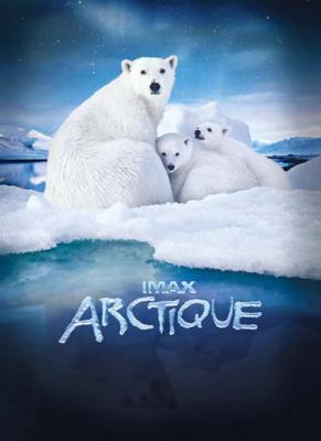 82220-week-end-arctique-a-la-geode