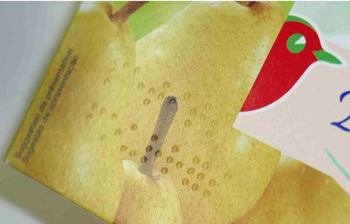 Auchan_produit braille