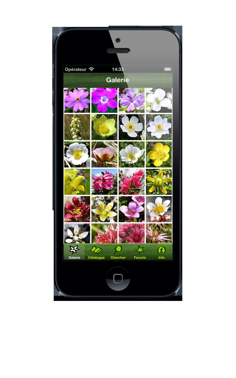 phone_f_galerie