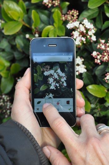 Pl@ntNet : Une application smartphone pour identifier les plantes