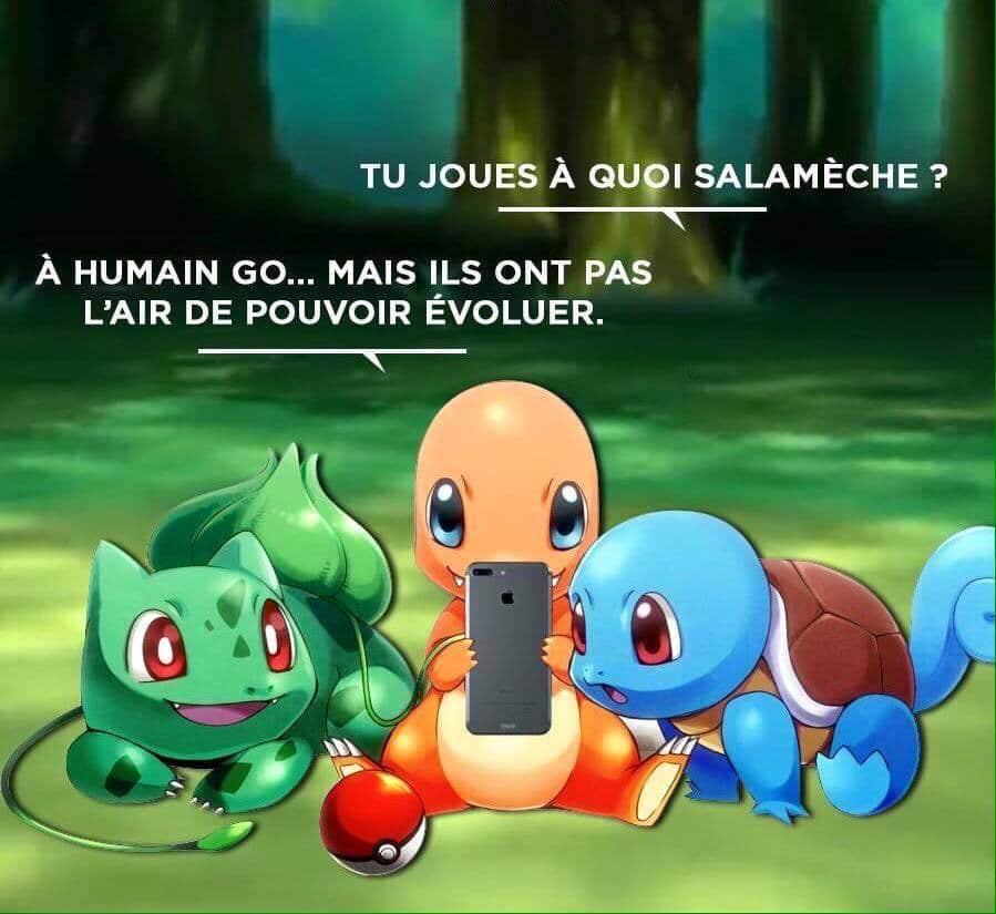 Plus fort que Pokémon Go, Nature Go !